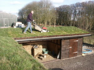 Mowing the Stable Roof